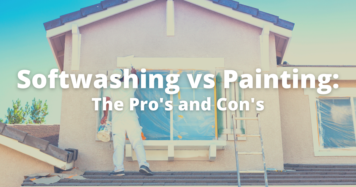 Softwashing vs Painting | All trade pressure washing